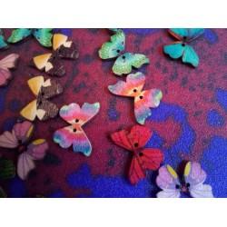 Motylowe guziki